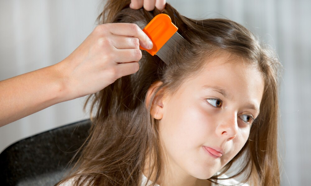 There's a reason your kid keeps getting head lice