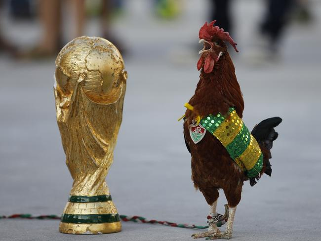Ah, but Xavier, here's a way you can enjoy the 2014 FIFA World Cup in Brazil AND have your fried chicken. (AP Photo/Leo Correa)