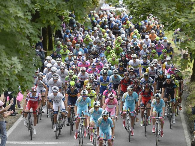 The Giro field last year with Italy's's Vincenzo Nibali, centre, wearing the pink jersey.