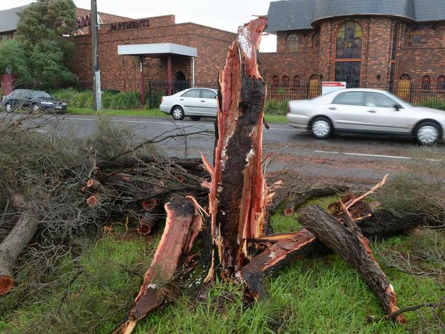 Storm damage around the Frankston area. Picture: Chris Eastman