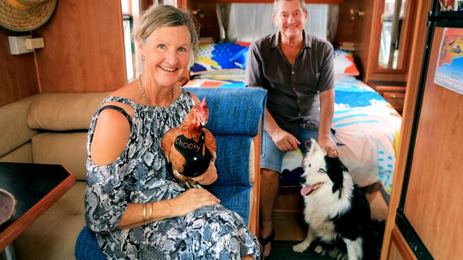 Grey nomads Judy and Greg Hay travel with their chicken Chook Chook and border collie Missy. Picture: Tim Marsden