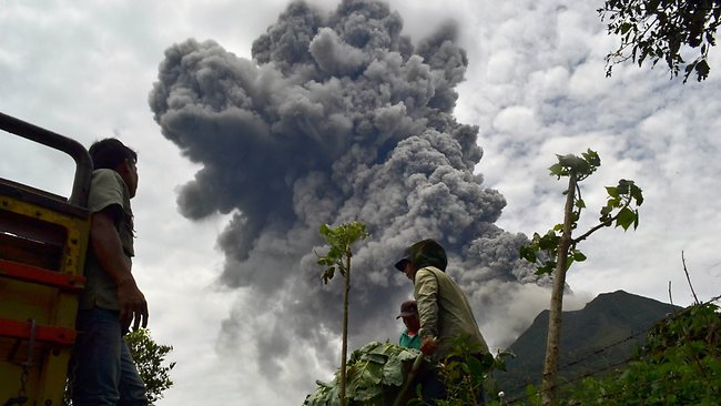 Indonesian farmers rush to harvest crops in the district of Karo as an ash cloud rises during a fresh eruption of the Mount Sinabung volcano.