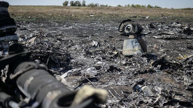 View of the crash site of the Malaysia Airlines Flight MH17 in the village of Hrabove. Picture: AFP/ Bulent Kilic