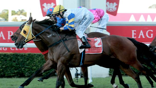 Dienekes (outside) is tipped to give punters a great start to today's Eagle Farm meeting.