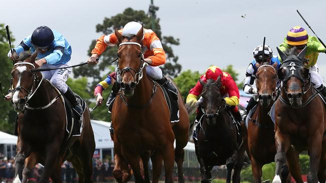 Blake Shinn says Who Shot Thebarman is not without a chance in the Melbourne Cup.