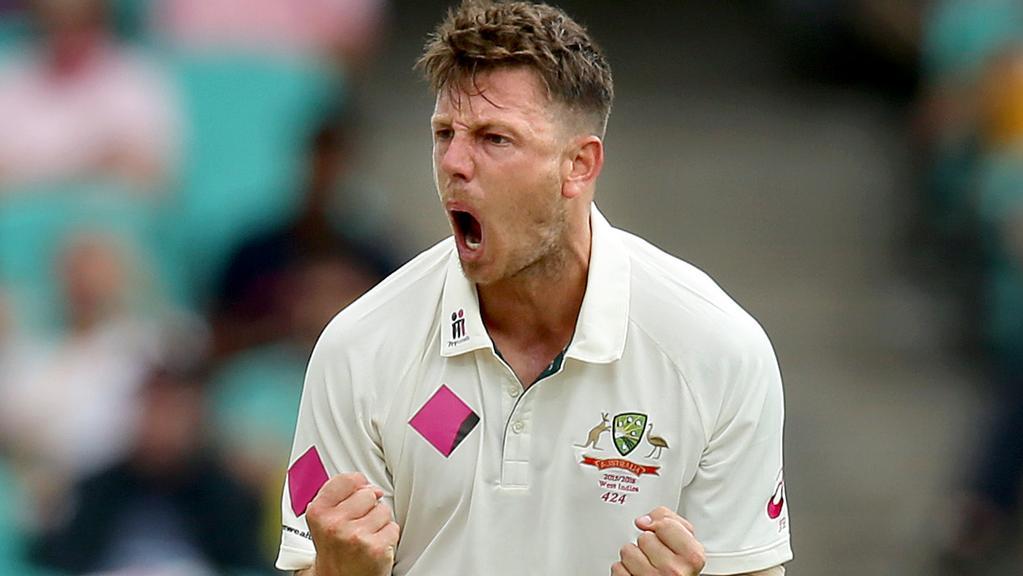 james pattinson  australian test summer off agenda for