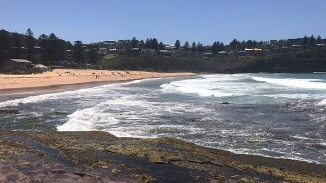 Maggots wash up at Bilgola Beach. Picture: Colin Weir