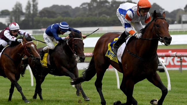 Super talent Vinland takes out the Spicer Thoroughbreds Handicap at Sandown. Picture: AAP