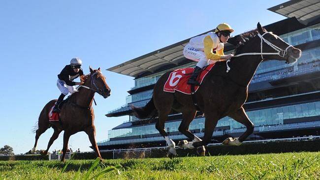 Field Marshall excels fresh and can finish strong late at Royal Randwick this afternoon.
