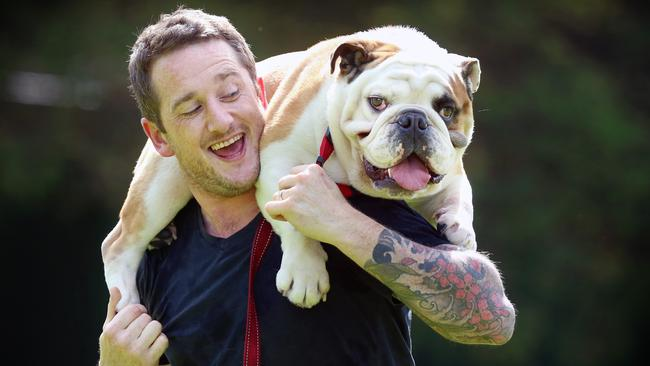 Marty McCorry and his best mate Beau the English bulldog — one of the breeds Aussies are increasingly favouring. Picture: Alex Coppel