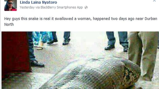 He swallowed a human in Durban.