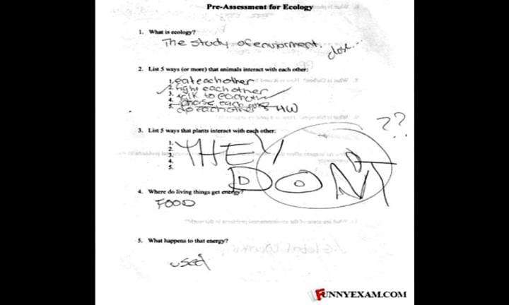 funny-exam-answers-07