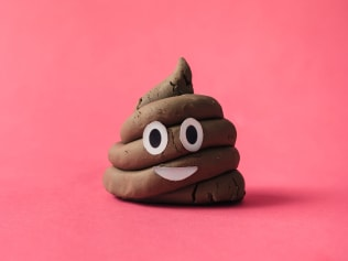 We all get the poops Photo: Stocksy