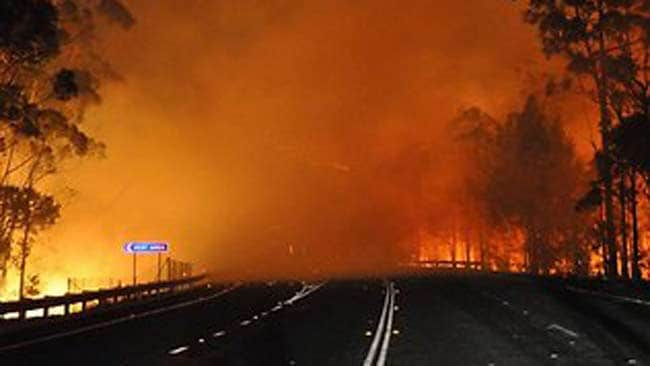 The blaze at Deans Gap crosses the Princes Highway on Tuesday night. Picture: NSW Rural Fire Service