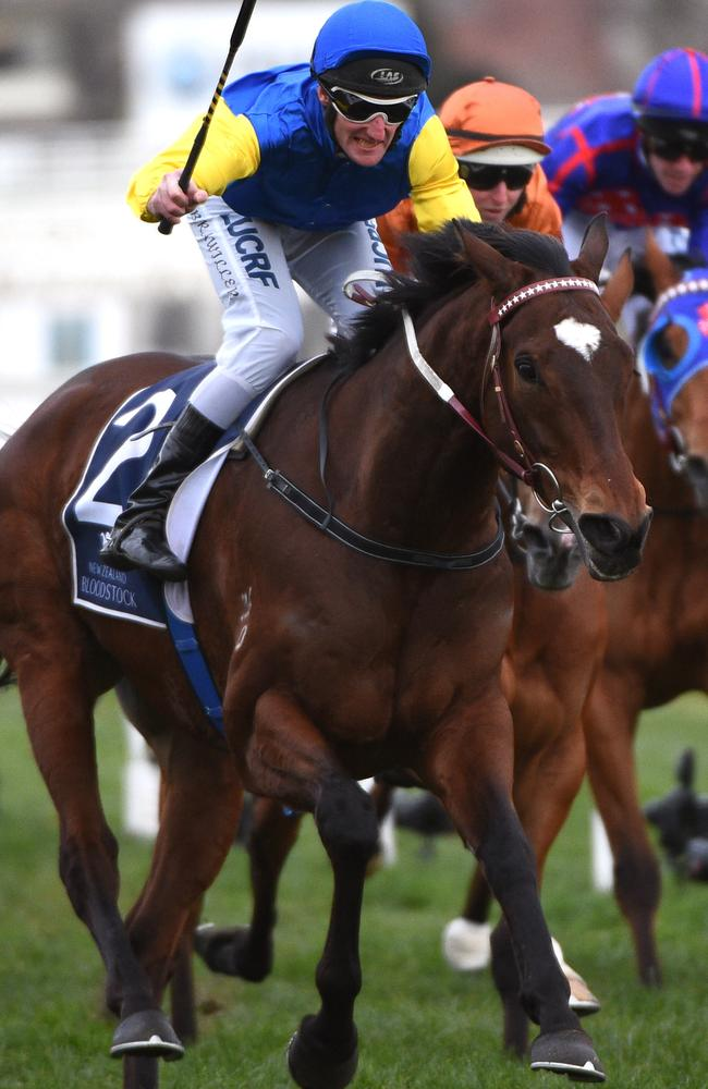 Brad Rawiller combines with Black Heart Bart to win the Memsie Stakes. Picture: Getty Images