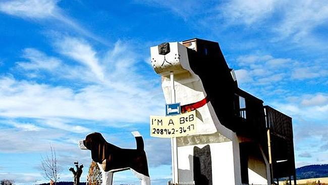 YOU probably wouldn't mind a night in the doghouse, if it looked like this. Picture supplied: www.unusualhotelsoftheworld.com