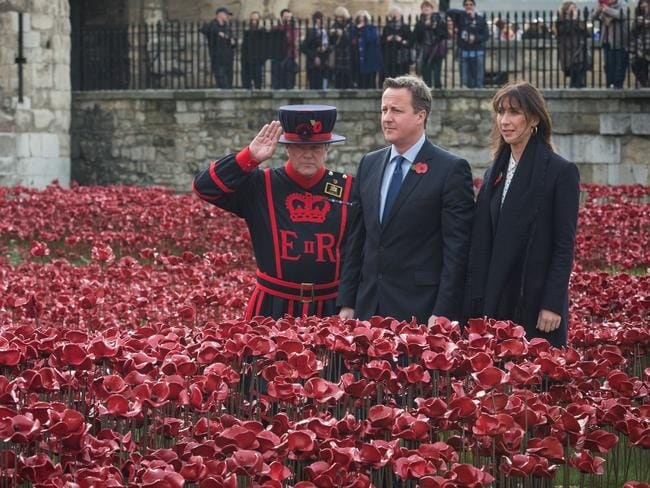 "A Yeomen Warder salutes as British Prime Minister David Cameron and his wife Samantha visit the ""Blood Swept Lands and Seas of Red"" installation by ceramic artist Paul Cummins and theatre stage designer Tom Piper. AFP PHOTO / POOL / STEFAN ROUSSEAU"