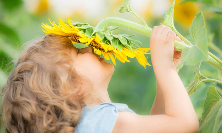 7 fun gardening activities for kids