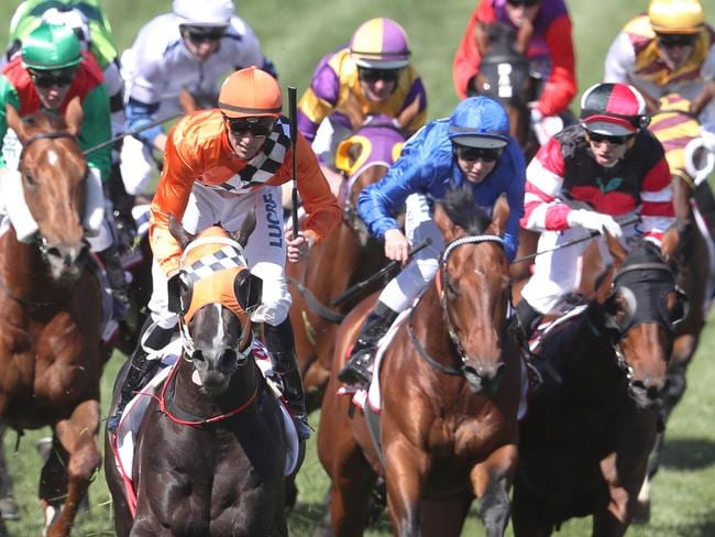 Forecast hot weather has Racing Victoria putting in place reprogramming to ensure the safety and protection of horses and participants this week.