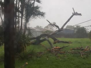 Cyclone Debbie - Facebook user Tracy Levett posted this image of her backyard in Bowen, Queensland. Permission given. Picture: Tracy Levett/Facebook