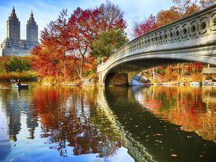 Central Park at autumn