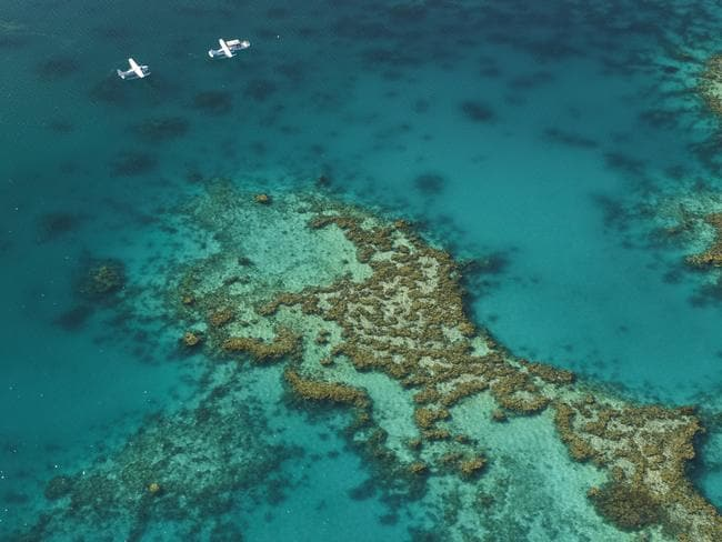 The Great Barrier Reef is the world's largest living organism. Picture: Tourism Australia.