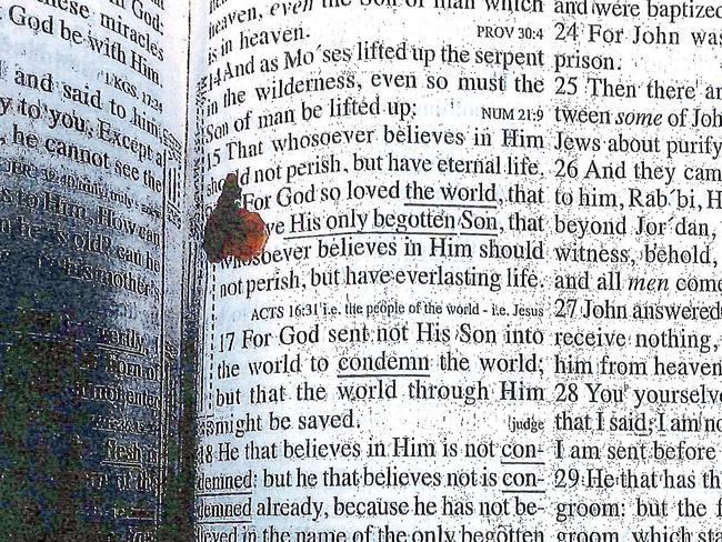 This bible, with a drop of blood, was found in the cell of former New England Patriots player Aaron Hernandez.
