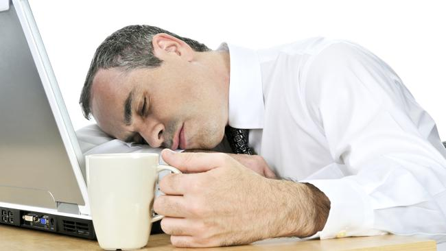 Sleep Day Twitter: University Of Adelaide Research Suggests A Fatty Diet