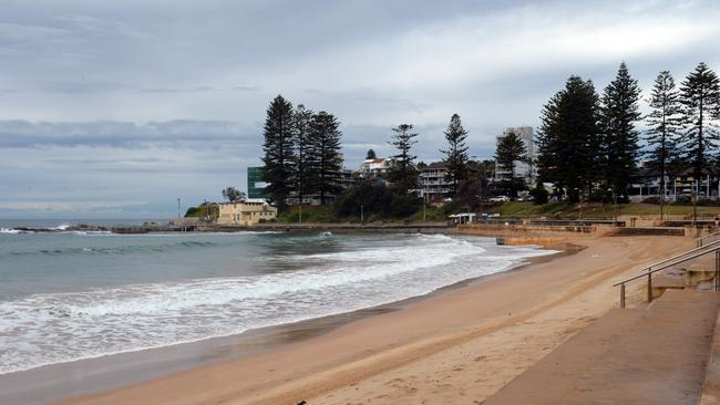 Nable is a fan of the northern beaches' outdoor lifestyle and natural beauty.