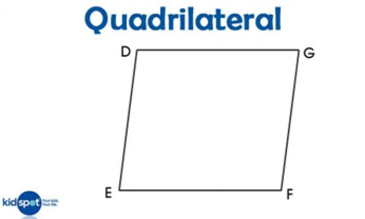 Quadrilaterals Picture  Images of Shapes