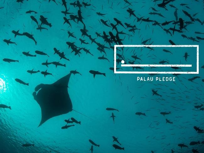 Visitors to Palau must act in an ecologically responsible way, for the sake of Palau's children and future generations of Palauans. Picture: Supplied/ Palau Pledge