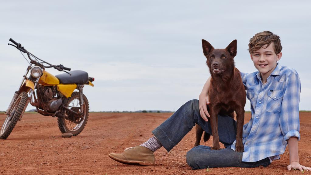 red dog true blue movie on boxing day news local