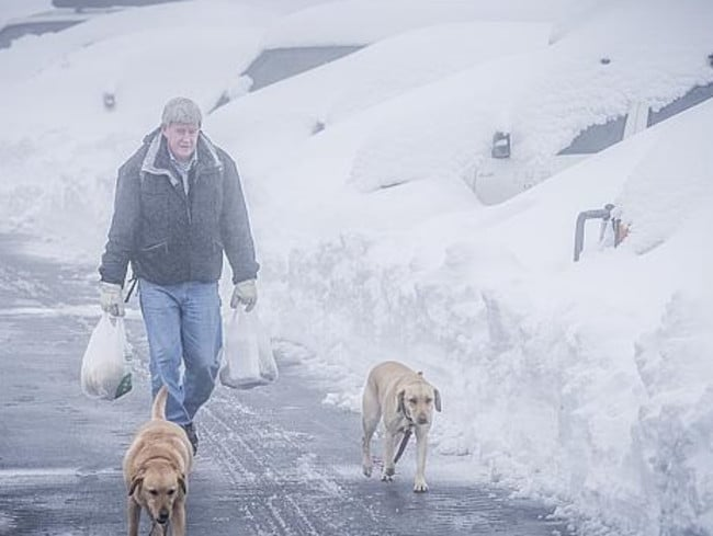 It was easier to walk to the shops than to have to dig the car out for the trip. Picture: Jason Edwards