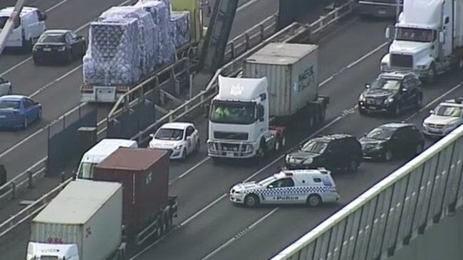 The dog closed all inbound and outbound lanes on the bridge. Picture: Nine News