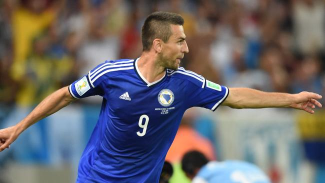 Bosnia-Herzegovina's forward Vedad Ibisevic celebrates after scoring against Argentina.