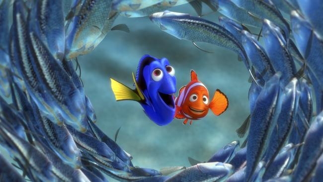 Finding Dory takes place a year after Finding Nemo.