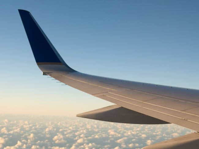 Static wicks help energy from lightning strikes and static electricity leave the plane safely.