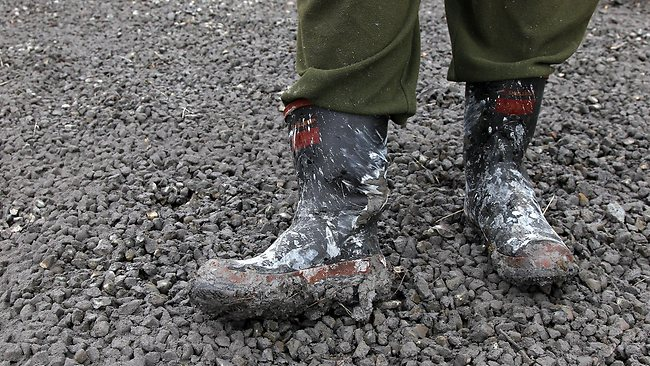 Ash stuck to gumboots and coating the ground. Picture: Hagen Hopkins