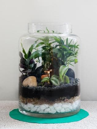 Terrariums can provide a splash of green in a hipster haven where there may be little room for parks among the bike and thick-rimmed glasses stores. Photo: Terrarium by Miniscapes, www.miniscapes.net.