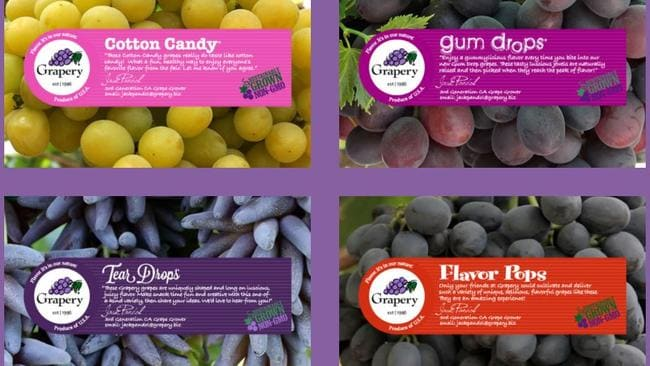 The different types of grapes sold by American grape grower Grapery.