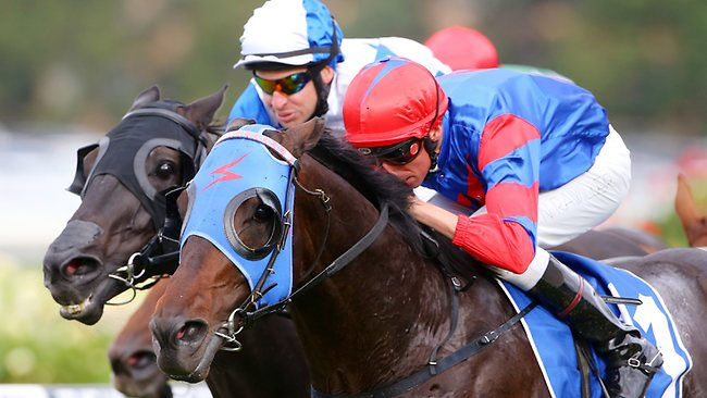 Pierro worked home to win the George Ryder Stakes with Nash Rawiller in the saddle. Picture: Mark Evans