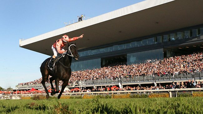 UNBEATABLE: Black Caviar strides to win No.13 in the BTC Cup at Doomben in 2011. Picture: Jono Searle
