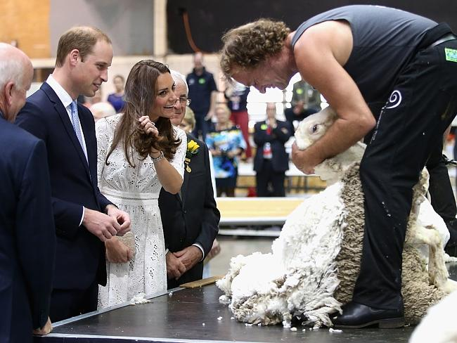 Prince William and Kate watch a shearing demonstration at the Sydney Royal Easter Show.