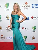 Kayla Dickson on the red carpet arriving at the 2014 Allan Border Medal held at Doltone House at Hyde Park. Picture: Richard Dobson
