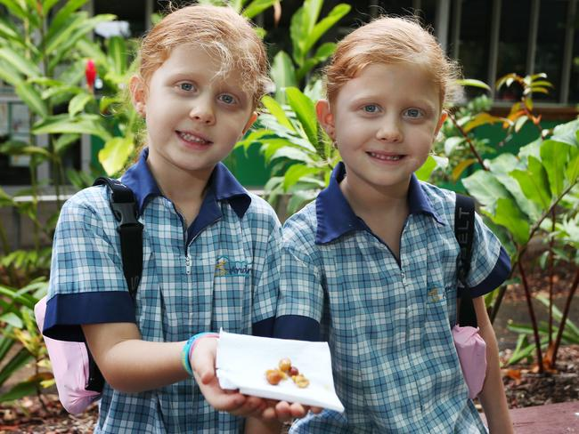 Suffer from asthma and anaphylaxis from nuts ... Twins (from left) Matilda Corlett and Summer Corlett. Picture: Brendan Radke.