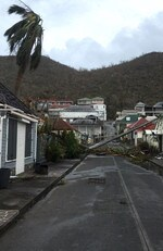 A picture released by Facebook user Kevin Barralon on September 7, 2017 shows ripped off trees in a street of Gustavia on the French overseas collectivity of Saint-Barthelemy in the Caribbean following hurricane Irma. Picture: AFP PHOTO / Kevin Barrallon