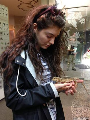 Lorde checks out a lizard ahead of her concert at Adelaide Entertainment Centre. Picture: Adelaide Zoo