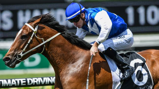 Bon Amis will be chasing his fifth straight win on Saturday at Rosehill.