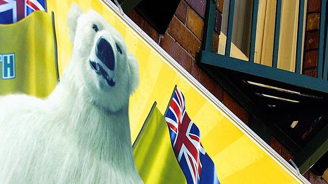 Cuddly character ... a 2010 study found that three-quarters of 155 children recognised the Bundy Bear and correctly associated it with Bundaberg rum.