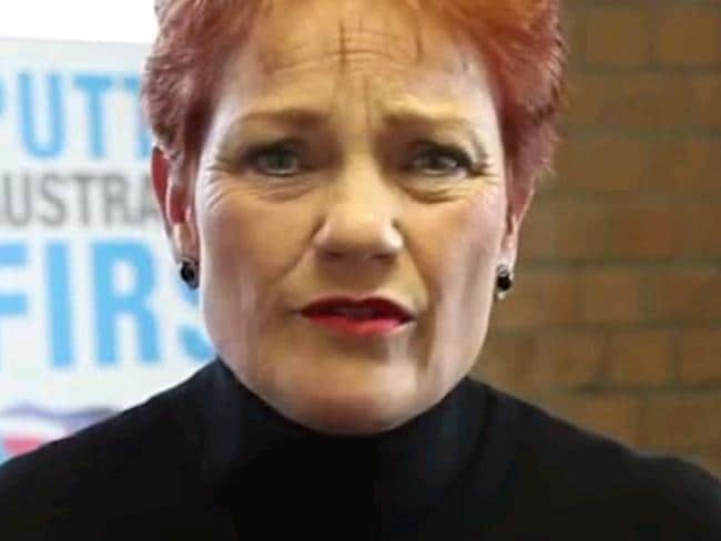 The Party for Freedom supports One Nation leader Pauline Hanson.